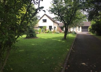 Thumbnail 5 bed detached house to rent in Belfast Road, Muckamore, Antrim