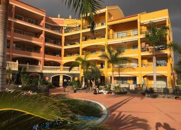 Thumbnail 3 bed apartment for sale in Arona, Canary Islands, 38632, Spain