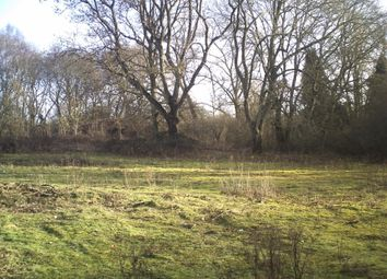 Thumbnail Property for sale in Liphook By-Pass, Liphook