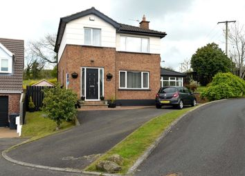 Thumbnail 4 bedroom detached house for sale in Dunlady Manor, Dundonald, Belfast