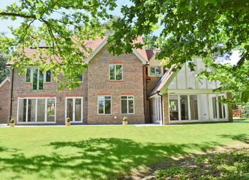 Thumbnail 5 bed detached house for sale in Woodbury, Brockenhurst