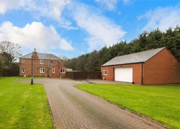 Thumbnail 4 bed detached house for sale in Boston Road, Heckington, Sleaford