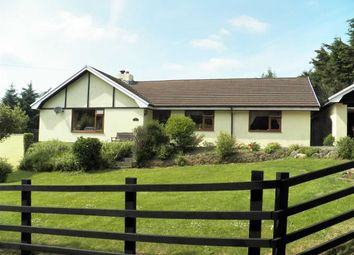 Thumbnail 3 bed detached bungalow for sale in Rhydlewis, Llandysul