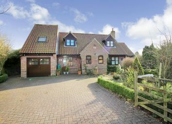 Thumbnail 4 bed detached house for sale in Crowes Loke, Little Plumstead, Norwich
