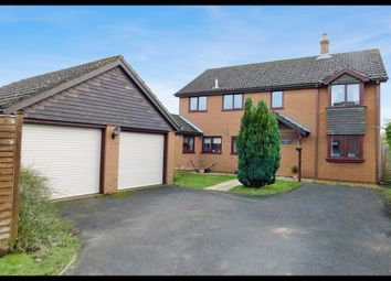 Thumbnail 4 bed detached house for sale in Calmore Road, Southampton