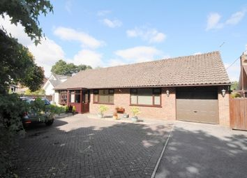 Thumbnail 4 bed bungalow for sale in Glenwood Road, West Moors, Ferndown