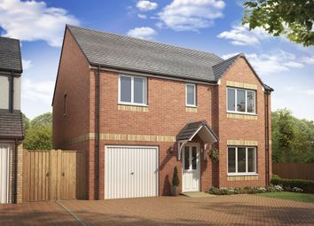 "Thumbnail 4 bedroom detached house for sale in ""The Whithorn "" at Lanton Road, Falkirk"