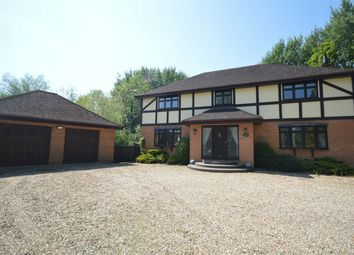 Thumbnail 4 bed detached house for sale in Doctors Meadow, Horsham St. Faith, Norwich