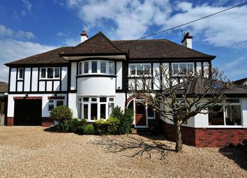 Thumbnail 5 bed property for sale in Sidmouth Road, Lyme Regis