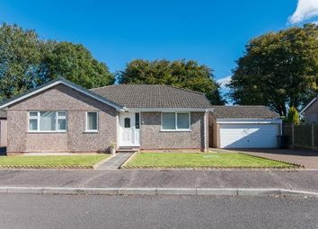 Thumbnail 3 bed bungalow for sale in Dunkeswell, Honiton, Devon