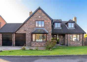 Thumbnail 4 bed detached house for sale in Curlew Crescent, Newtownards, County Down