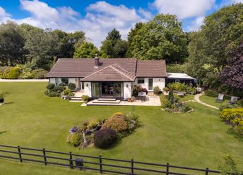 Thumbnail 4 bed equestrian property for sale in Little Downs, Cardinham, Bodmin