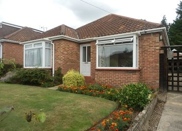 Thumbnail 2 bedroom detached bungalow to rent in Broom Avenue, Thorpe St Andrew, Norwich