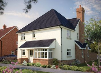 "Thumbnail 4 bed detached house for sale in ""The Rochester"" at Park Road, Hellingly, Hailsham"