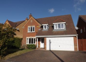 Thumbnail 4 bed detached house for sale in Sarisbury Green, Southampton, Hants