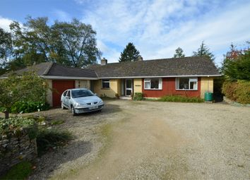 Thumbnail 3 bed detached bungalow for sale in Back Lane, Bisley, Stroud, Gloucestershire