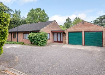 Thumbnail 3 bed detached bungalow for sale in Poplar Avenue, Norwich