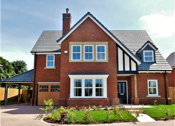 Thumbnail 5 bed detached house for sale in The Blackthorn, Wrestlers Grove, Langford, Beds