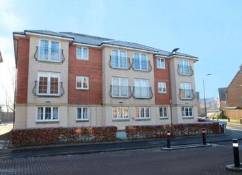 Thumbnail 2 bed flat for sale in Wilkie Place, Larbert