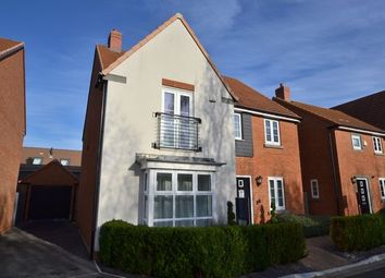 Thumbnail 4 bed detached house to rent in Jennings Way, Basingstoke