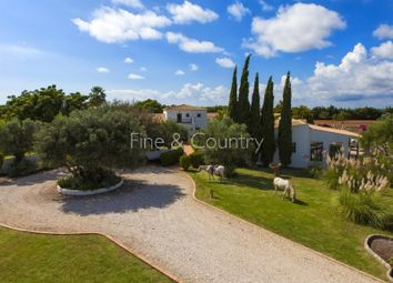 Thumbnail 4 bed detached house for sale in Silves, Silves, Silves