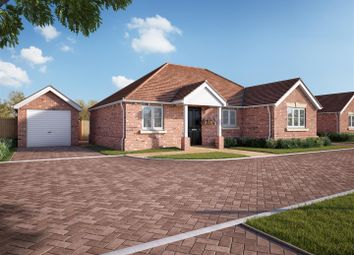 Thumbnail 3 bedroom detached bungalow for sale in 91 King Harold Road, Prettygate, Colchester