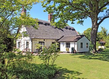 Thumbnail 5 bed detached house for sale in High Green, Brooke, Norwich, Norfolk