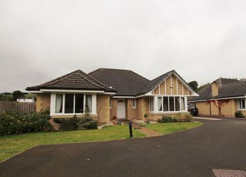Thumbnail 4 bed detached bungalow to rent in Byretown Grove, Kirkfieldbank, Lanark, South Lanarkshire