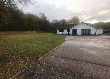 Thumbnail 4 bed bungalow to rent in Doe Brow, Clifton House Road, Clifton