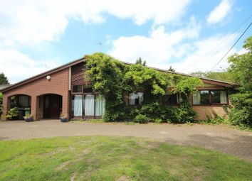 Thumbnail 4 bedroom detached bungalow to rent in The Green, Surlingham, Norwich