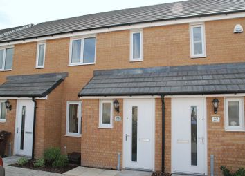 Thumbnail 2 bedroom terraced house to rent in Bluebell Street, Palmerston Heights, Derriford