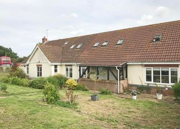 Thumbnail 6 bed equestrian property for sale in Tiptree Equestrian Centre, Simpsons Lane, Tiptree, Colchester, Essex