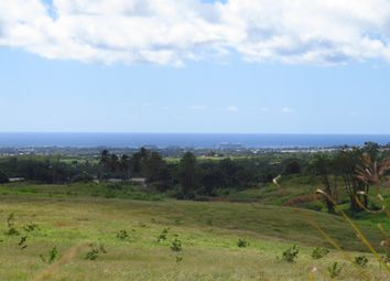 Thumbnail Land for sale in Walkes Plantation, St. Thomas, Barbados