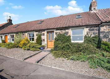 Thumbnail 3 bed bungalow to rent in The Row, Letham, Cupar