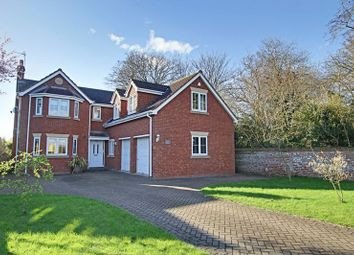 Thumbnail 5 bed detached house for sale in Marsh Lane, Ryehill, Hull