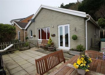 Thumbnail 4 bed bungalow for sale in Brynglas Road, Aberystwyth, Ceredigion