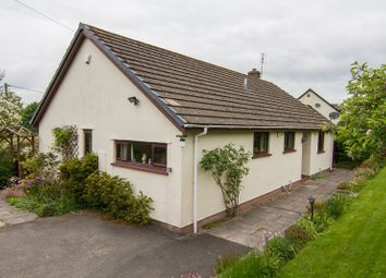 Thumbnail 2 bed bungalow for sale in Cathedine, Bwlch, Brecon