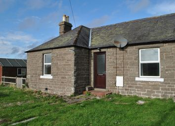 Thumbnail 2 bed semi-detached bungalow to rent in Cottage 2 Powis Powis, By Montrose, Montrose