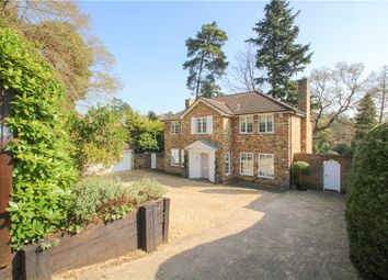 Thumbnail 5 bed detached house for sale in Waverley Drive, Camberley, Surrey