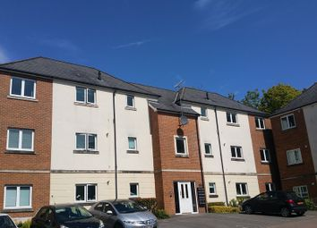 Thumbnail 2 bed property to rent in Golden Mile View, Newport