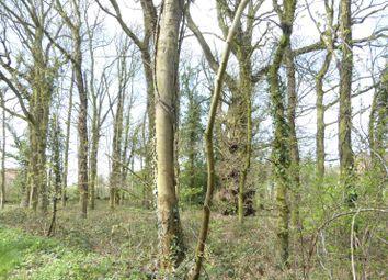 Thumbnail Land for sale in Fakenham Road, Gressenhall, Dereham, Norfolk