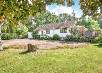 4 bed bungalow for sale in Sandy Lane, Taverham, Norwich NR8