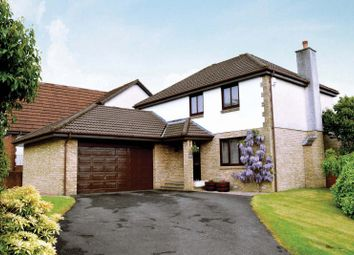Thumbnail 5 bed detached house for sale in Parkinch, Erskine