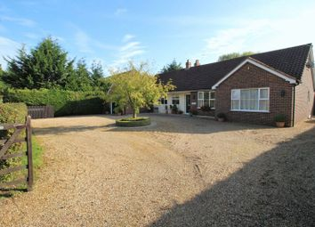 Thumbnail 5 bed bungalow for sale in Mill Road, Marlingford, Norwich