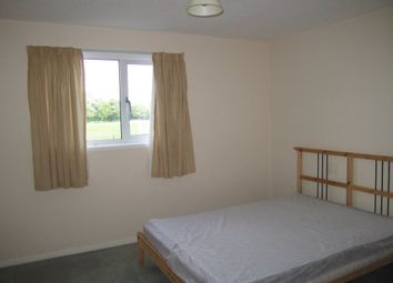 Thumbnail Room to rent in Stumpacre, Bretton, Peterborough