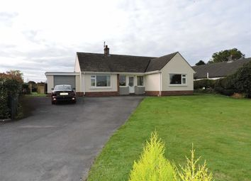 Thumbnail 3 bed detached bungalow for sale in Gwynfe, Llangadog
