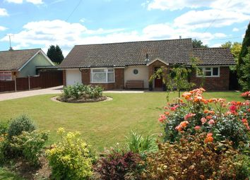 Thumbnail 3 bed detached bungalow for sale in Barnhall Road, Tolleshunt Knights, Maldon