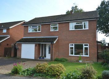 Thumbnail 4 bedroom detached house for sale in Keys Drive, Wroxham, Norwich