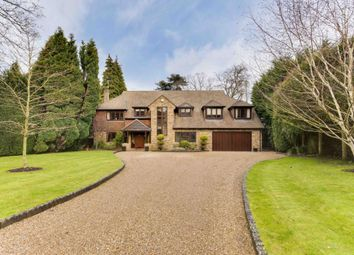 Thumbnail 6 bed detached house to rent in Firfields, Cobbetts Hill