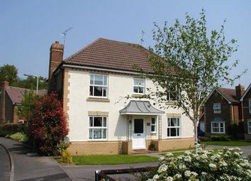 Thumbnail 4 bed detached house to rent in Acorn Grove, Knightwood Park, Chandler's Ford